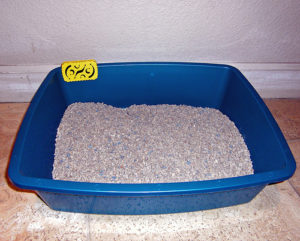Innofresh Pet Odor Absorber in litter box