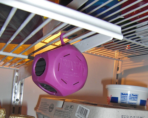 in-use-fridge-shelf2
